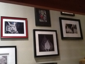 Set of framed images arranged on a wall